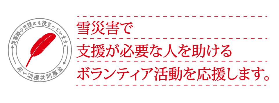 災害ボランティアタイトル.jpg